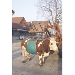 Ierīce govs pacelšanai