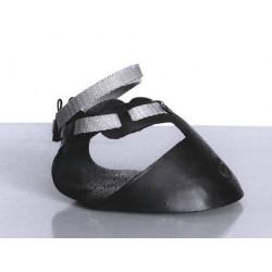 Shoof's Horse Shoe