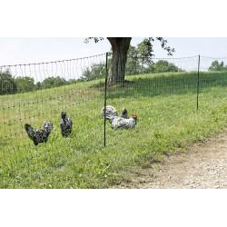 PoultryNet green,...