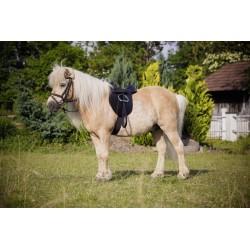 Saddle Set Pony Economy